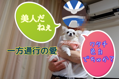 20150408202316929.png
