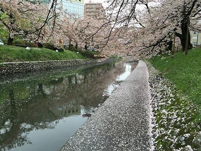 松川花筏1