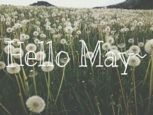 hello-may-2-300x225.jpg