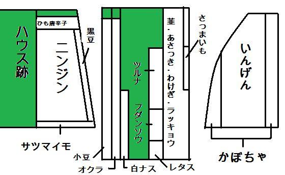 畑レイアウト2014