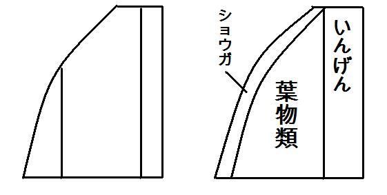 畑レイアウト 2015畑C案(仮