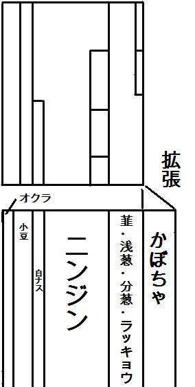 畑レイアウト 2015畑B案(仮