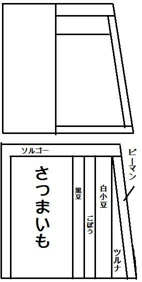 畑レイアウト 2015畑A案(仮