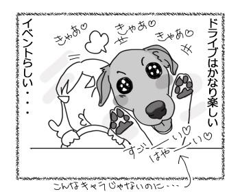 羊の国のラブラドール絵日記シニア!!「チェイスとドライブ」3