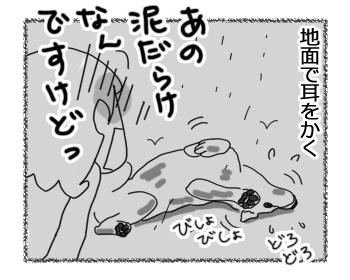 羊の国のラブラドール絵日記シニア!!「寝不足は突然に」2