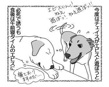 羊の国のラブラドール絵日記シニア!!「かみあわない午前中の男子」3