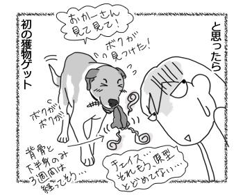 羊の国のラブラドール絵日記シニア!!「わかりやすいチェイス」2