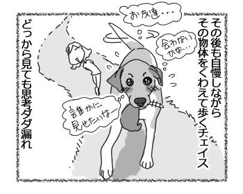 羊の国のラブラドール絵日記シニア!!「わかりやすいチェイス」4