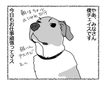 羊の国のラブラドール絵日記シニア!!「犬とアヒル」1