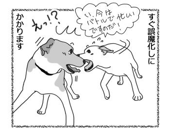 羊の国のラブラドール絵日記シニア!!「ワンパターン(犬なだけに(* ̄m ̄)プッ)」2