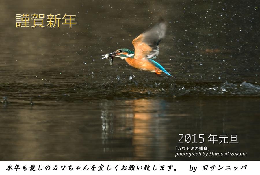 nenga2015_1.jpg
