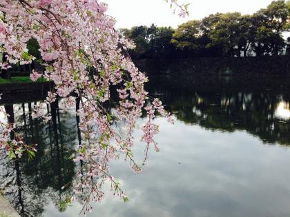 20150411koukyo_3_convert_20150411213033.jpg