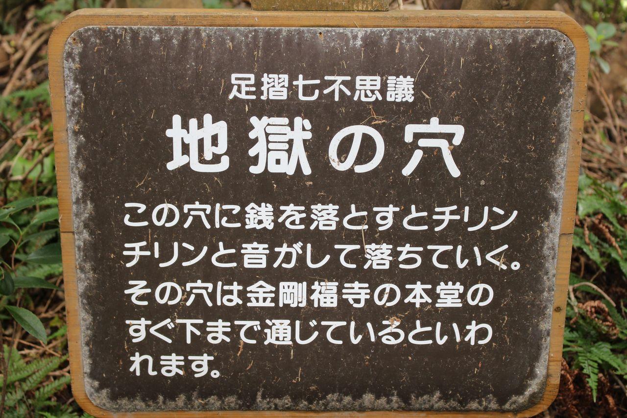 足摺岬-16