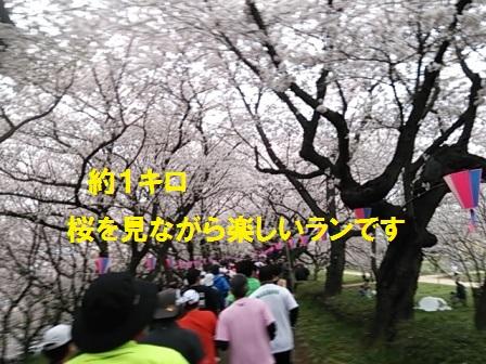 201504061258354a2.jpg