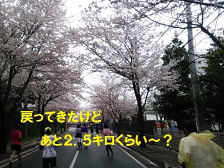 2015040612592995b.jpg