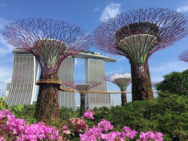 シンガポールの新名所、ガーデンズバイザベイ 昼編