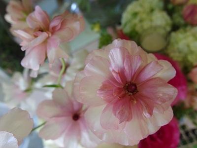母の日花ギフト Mother`s  Day アレンジメント