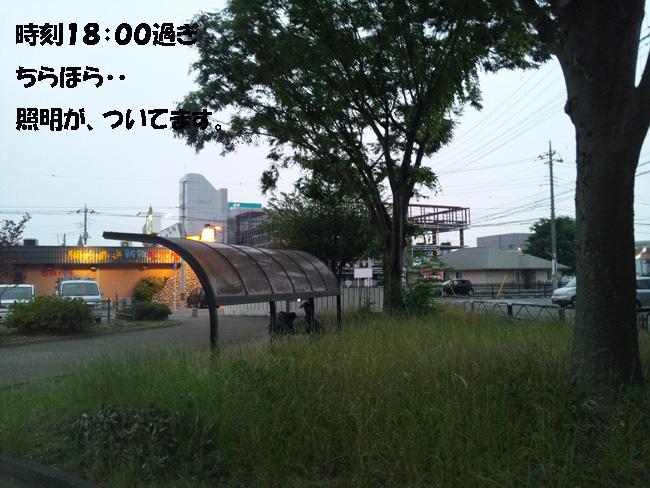 005-156789-976543.jpg