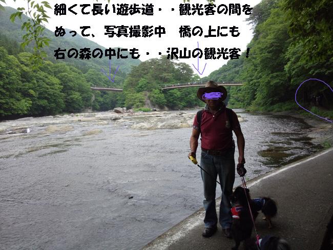 019-135789-987643.jpg