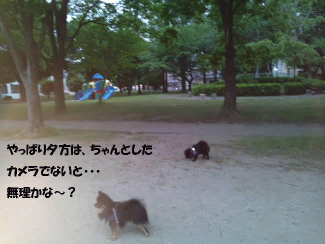 051-13578-8754.jpg