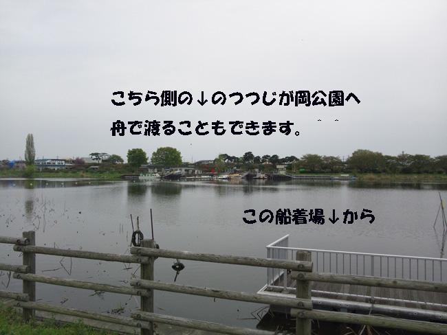 117-4678899-9754.jpg