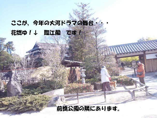 150110_102830-1.jpg