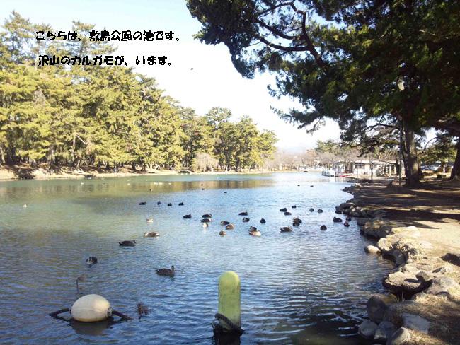 150118_113019-1.jpg