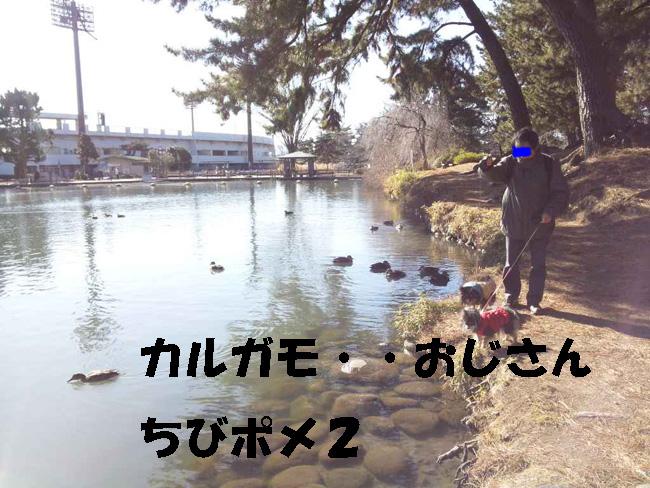 150118_120600-2.jpg