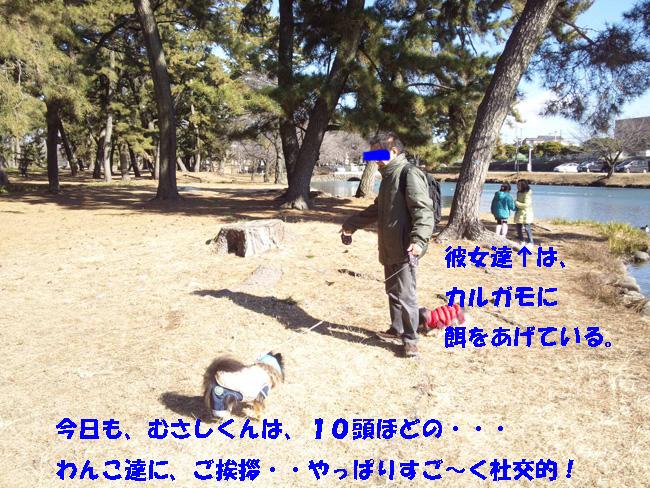 150118_120954-1.jpg