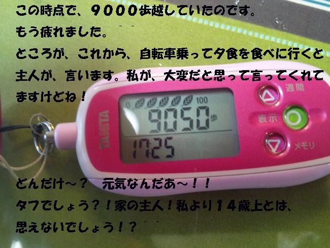 163-18632396-4789.jpg