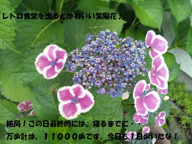 167-14689-876542-987.jpg
