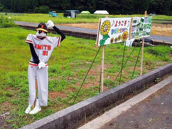 himawari-20150814-01s.jpg