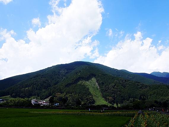 himawari-20150814-08s.jpg