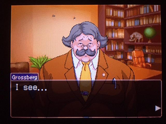 逆転裁判 北米版 DL-6に詳しい弁護士7