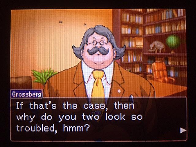 逆転裁判 北米版 DL-6に詳しい弁護士13