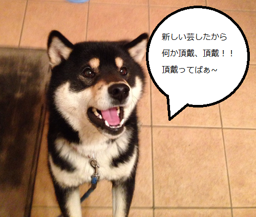 20150617153908eb5.png
