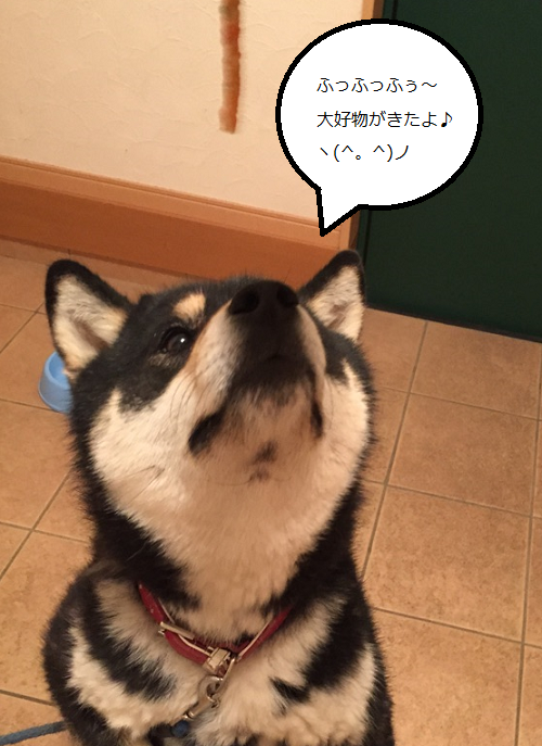 2015061715393527c.png