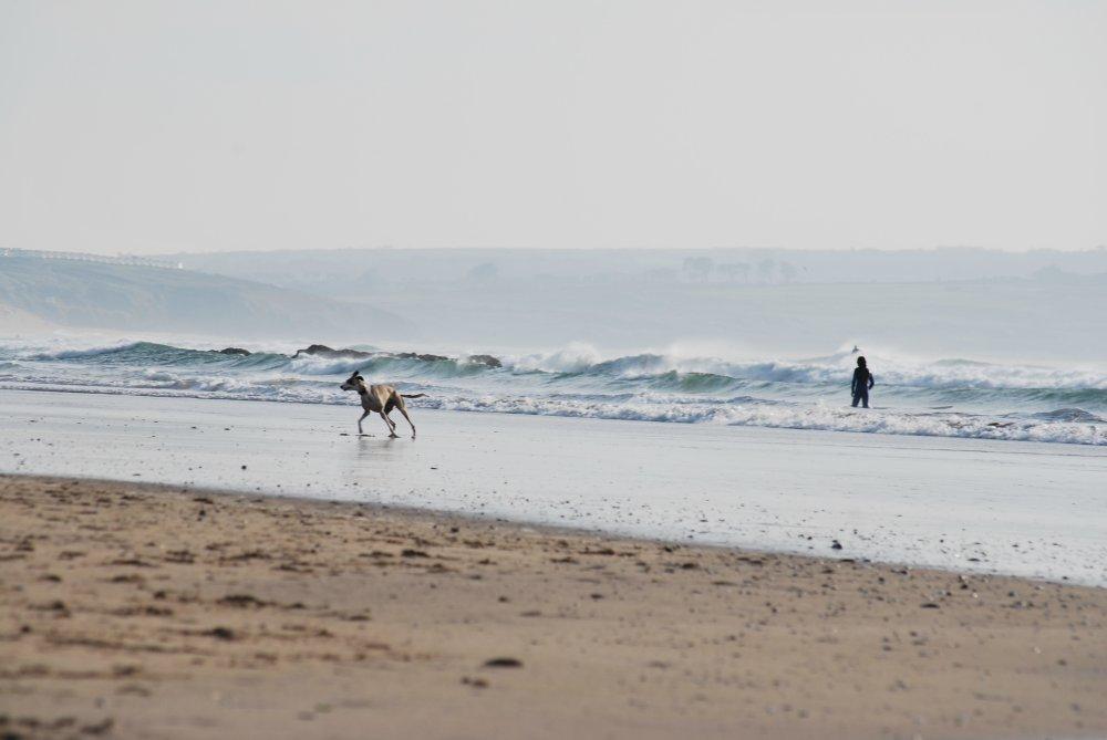 beachmuser.jpg