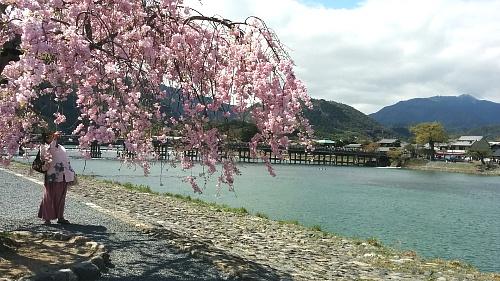 ayashiyama4.jpg