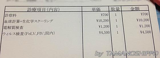 治療費(血液検査 等)