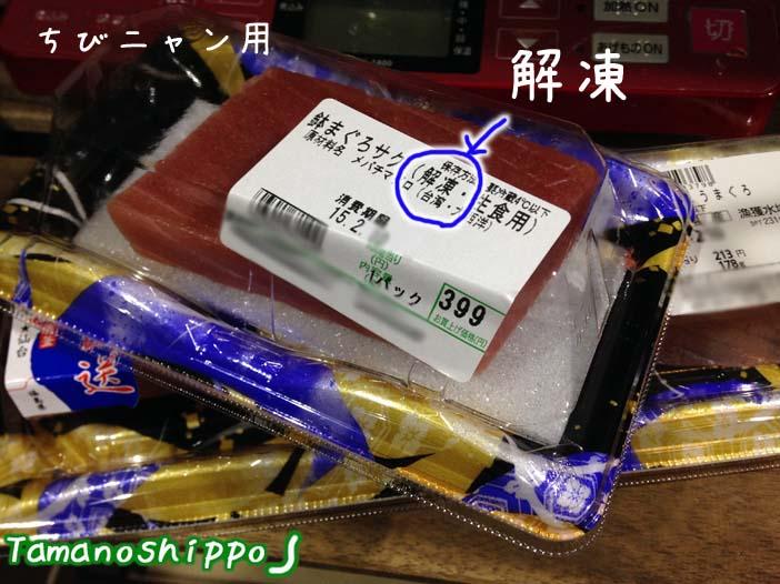 お刺身(解凍マグロ)ちびニャン用
