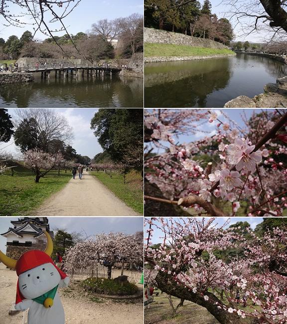 20150325071243f59.png