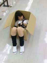 大島優子段ボール