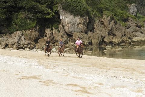 浜でレース