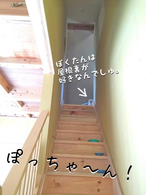 2015031722152680f.jpg
