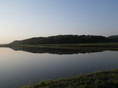 [写真]受付ハウス前の田んぼの水面に映った逆さ三舟山