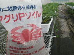 """[写真]来シーズンの親苗に施肥したカニ殻菌体有機資材 """"アグリPソイル"""""""