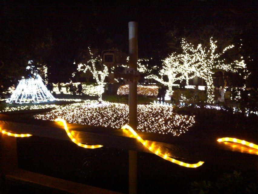 2015江ノ島ライトアップ