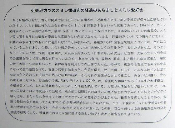 kinkiSumire_clubHist.jpg