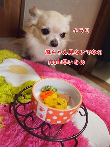 P2151732.jpg